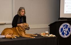 2016-mccauley-lab-with-dog